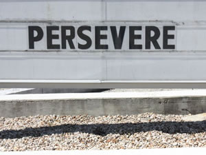 I must persevere.